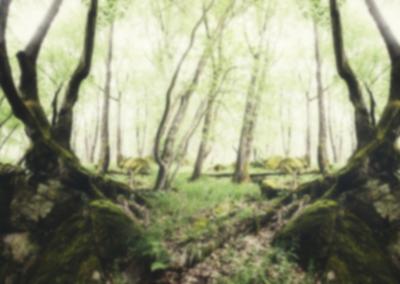 AdobeStock_137785710_blurred